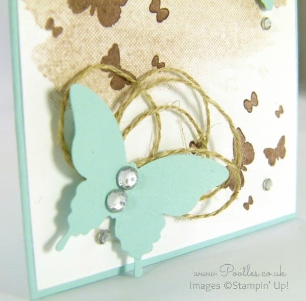 Stampin' Up! Demonstrator Pootles - Perpetual Birthday Butterflies! Close Up