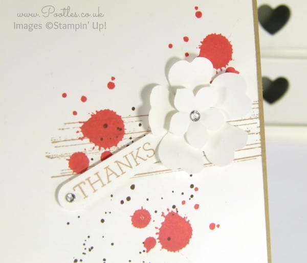 Stampin' Up! UK Demonstrator Pootles - Calypso Coral, Crumb Cake, Thanks! Petite Petals and Pansy Punch