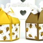 Beehive Box Tutorial using Stampin' Up! DSP