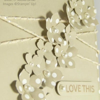 Spotty Cards using new Stampin' Up! DSP!