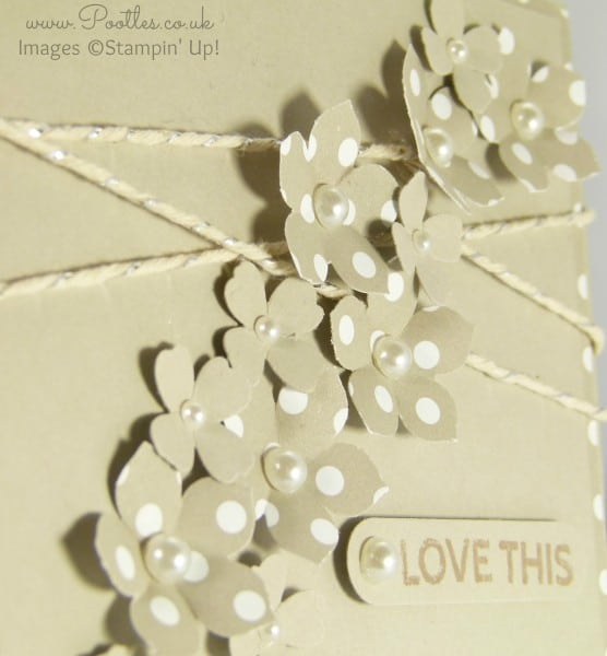 Pootles - Spotty Cards using new Stampin' Up! DSP! Close Up