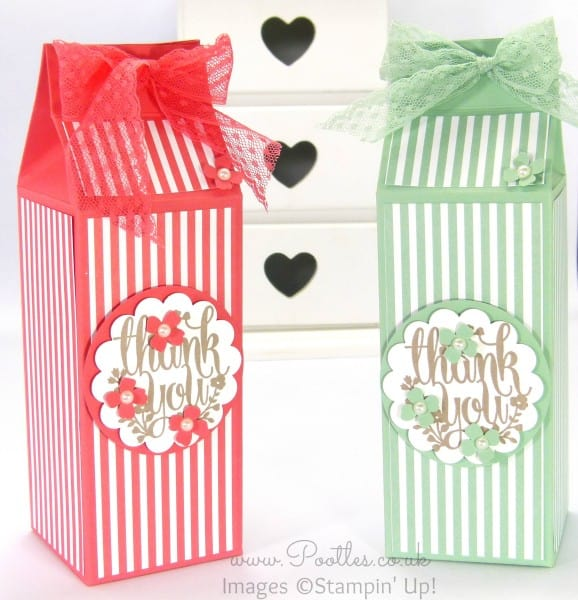 Stampin' Up! Demonstrator Pootles - Extra Large Body Shop Bottle Box Tutorial