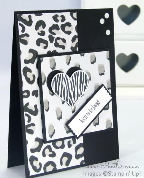 Stampin' Up! Demonstrator Pootles - Go Wild with Groovy Love!