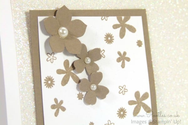 Stampin' Up! Demonstrator Pootles - Incentive Trip Swaps! close up