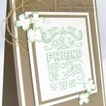 Friendly Wishes with Tip Top Taupe and Mint Macaron