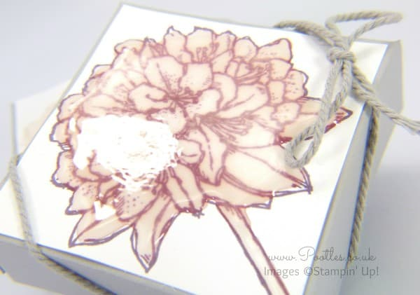 Stampin' Up! UK Demonstrator Pootles - 3 x 1 Stamped and Glazed Box Tutorial Stamped Detail
