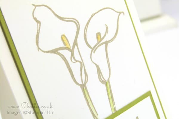 Stampin' Up! Demonstrator Pootles - Calla Lily Card using Remarkable You Stamp Set Blender Pen Detail
