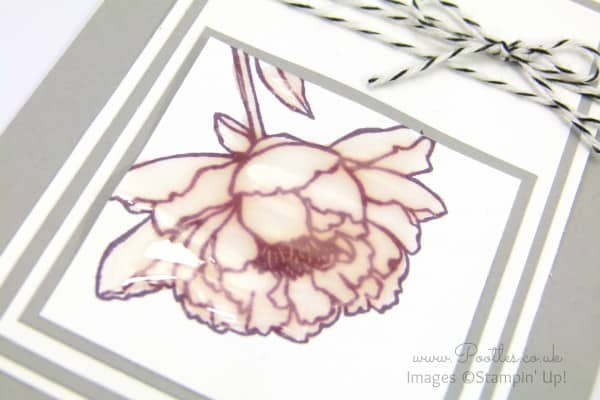 Stampin' Up! Demonstrator Pootles - Crystal Effects You've Got This Card Side Profile