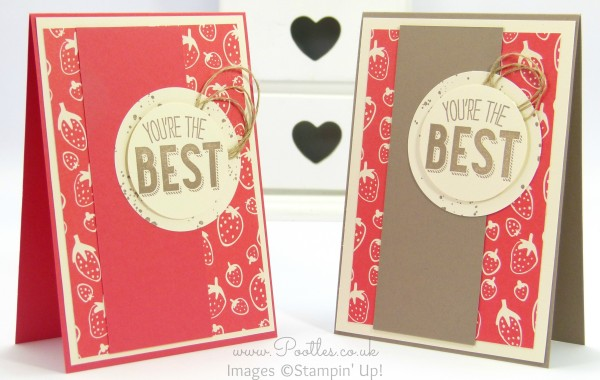 Stampin' Up! Demonstrator Pootles - Friendly Wishes and Sweet Li'l Things - 21 different cards! 4