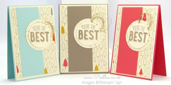 Stampin' Up! Demonstrator Pootles - Friendly Wishes and Sweet Li'l Things - 21 different cards! 5