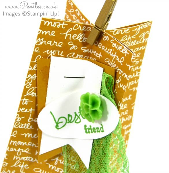 Stampin' Up Demonstrator Pootles - Scripted Square Bag Tutorial using Stampin' Up! DSP Tag Detail