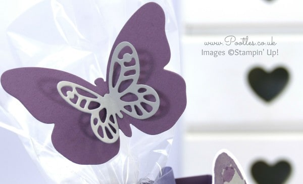 Stampin' Up! Demonstrator Pootles - Bold Butterflies Big Box. Amended on Camera... Framelits