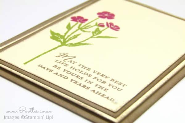 Stampin' Up! Demonstrator Pootles - Wild About Flowers Card. Are You Close Up