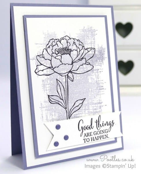 Stampin' Up! Pootles - You've Got This in Elegant Eggplant and Wisteria Wonder
