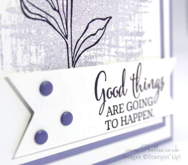 Stampin' Up! Pootles - You've Got This in Elegant Eggplant and Wisteria Wonder Close Up