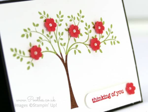 Stampin' Up! UK Demonstrator Pootles - Adorable A7 Size Hopeful Thoughts Card Punch Detail