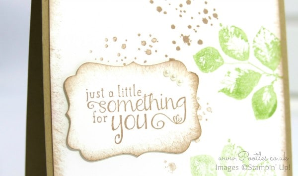 Stampin' Up! Demonstrator Pootles - Congratulations to my fabulous Team!! Close Up