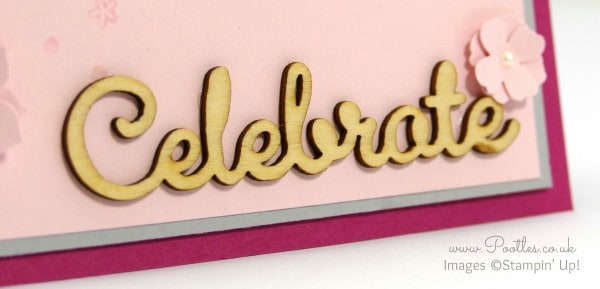 Stampin' Up! Demonstrator Pootles - Flowers, Celebrate, Pinks and Perpetual Birthday! Close UP
