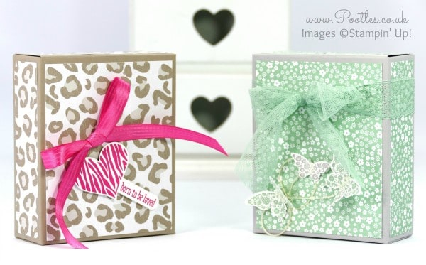 Stampin' Up! Demonstrator Pootles - Go Wild Box Tutorial using Stampin' Up! Paper