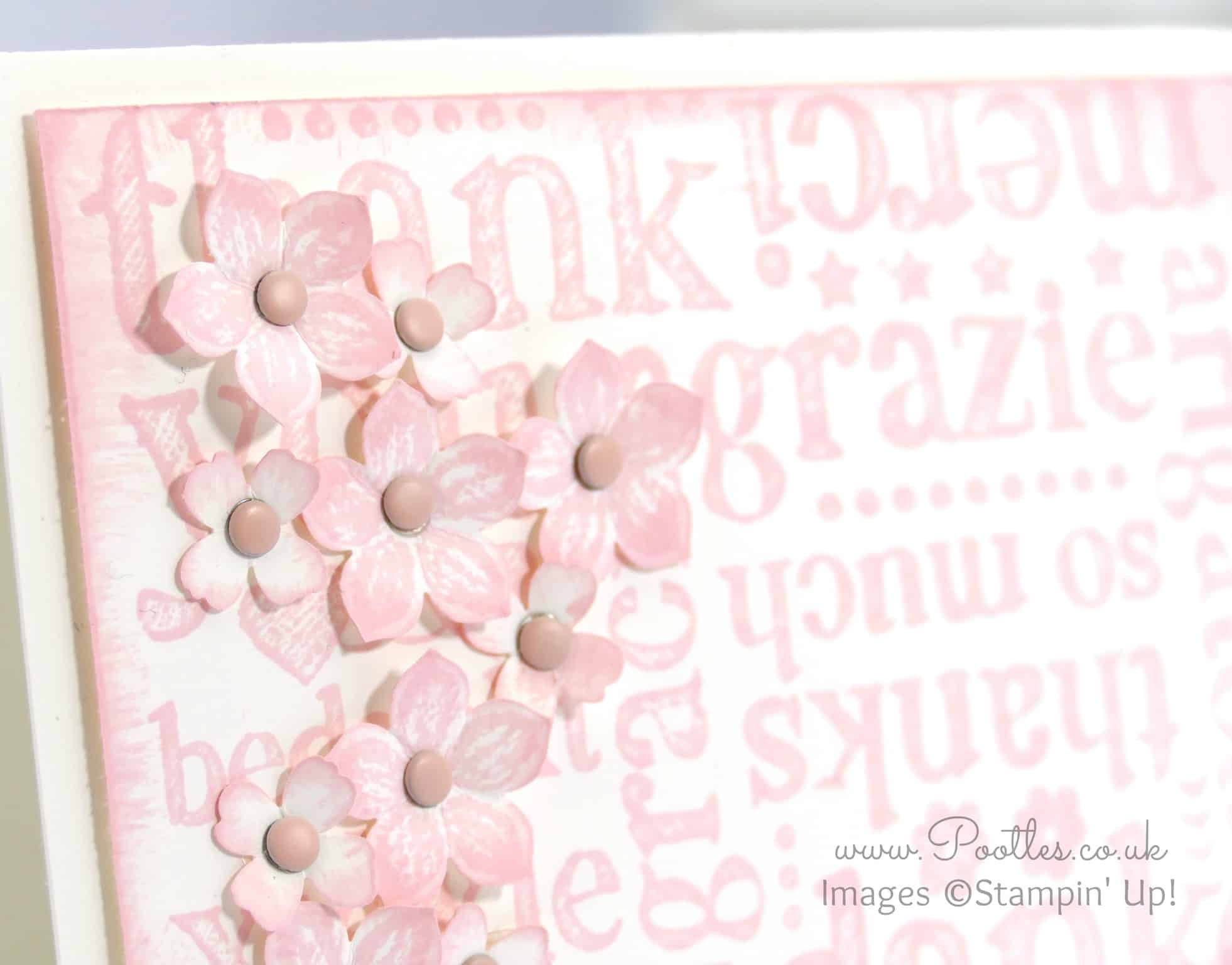 A World of Thanks in Pink Pirouette