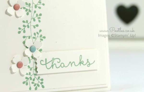 Stampin' Up! Demonstrator Pootles - Bordering Blooms in Blushing Bride, Pool Party and Mint Macaron Close up