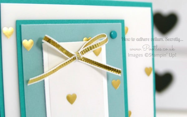 Stampin' Up! Demonstrator Pootles - Vellum Card Tutorial with Adhesive Ideas Close Up