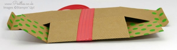 Pootles SpringWatch Shine On Fold Flat Box Tutorial Flattened!