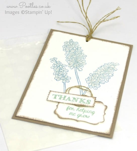 Stampin' Up! Demonstrator Pootles - Beautiful Bag of Thanks for Helping me Grow! Open