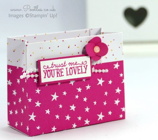 Stampin' Up! Demonstrator Pootles - Party Bag using Stampin' Up! DSP Close UP