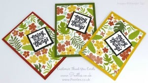 Stampin' Up! Demonstrator Pootles - Thank You Cards with Botanical Gardens 1