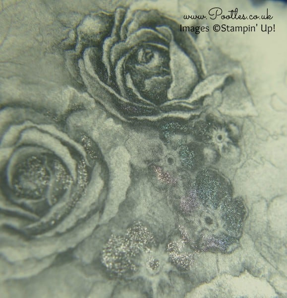 Stampin' Up! Demonstrator Pootles - Timeless Elegance with a Wink of Stella Close Up
