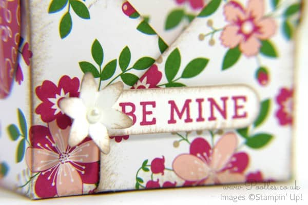Stampin' Up! Demonstrator Pootles - Way Back Wednesday - Envelope Punch Board Bag in a Box Blossom Bunch Punch