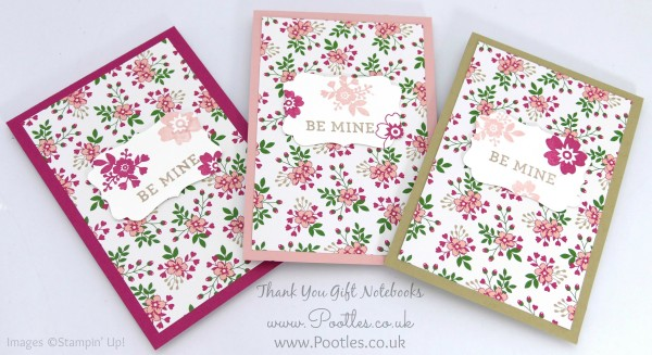 Stampin' Up! Demonstrator Pootles - Way Back Wednesday - Thank You Notebooks! 1