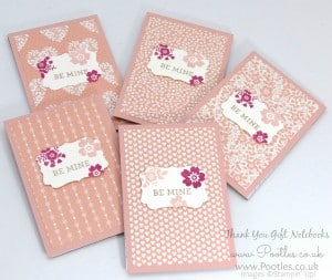 Stampin' Up! Demonstrator Pootles - Way Back Wednesday - Thank You Notebooks! 4