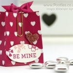 Pootles' SpringWatch Love Blossoms Treat Bag Tutorial Close Up