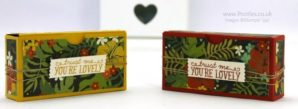Stampin' Up! Demonstrator Pootles - Botanical Gardens Pretty Box Tutorial - Fits Loads...!!