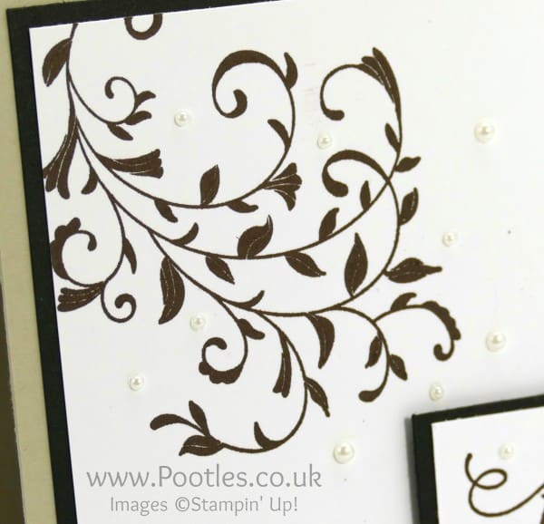 Stampin' Up! Demonstrator - Totally Neutral but Forever Friends! Close Up