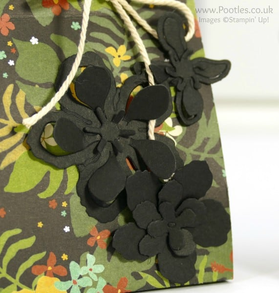 Stampin' Up! Demonstrator Pootles - Botanical Gardens Paper Bag Tutorial Framelits