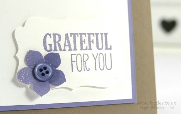 Stampin' Up! Demonstrator Pootles - Everything Eleanor For All Things Close Up