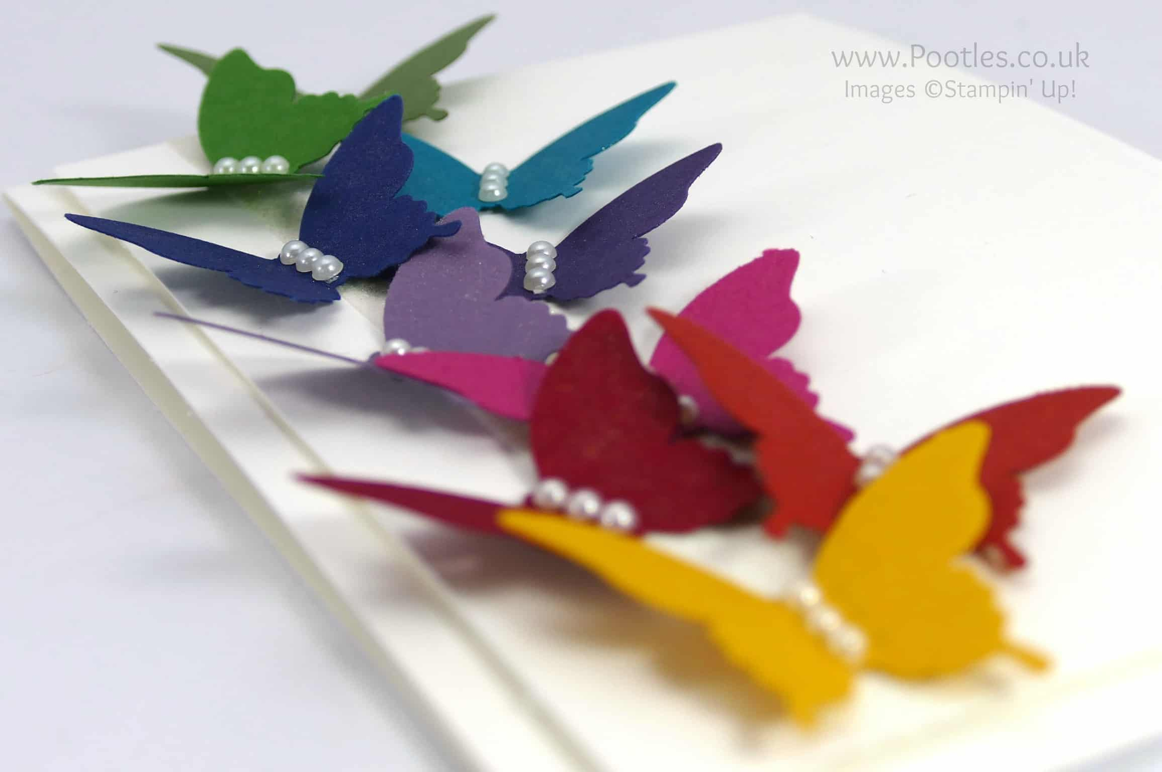Rainbow Elegant Butterflies and a little Wink of Stella