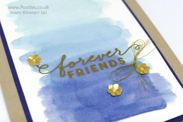 Stampin' Up! Demonstrator Pootles - Watercolouring with First Sight and Forever Friends Heat Embossed Detail