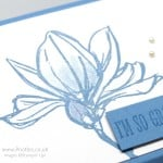 Fold Flat Box using Stampin' Up! Remarkable You