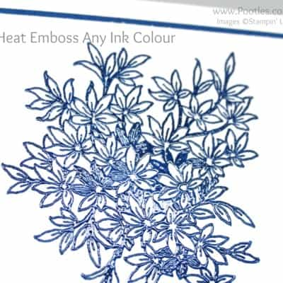 How To Heat Emboss Any Ink Colour