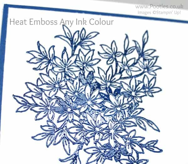Stampin' Up! Demonstrator Pootles - How To Heat Emboss Any Ink Colour Close Up
