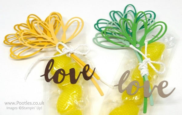 Stampin' Up! Demonstrator Pootles - Quick and Simple Sunshine Sweeties Die Cut Detail