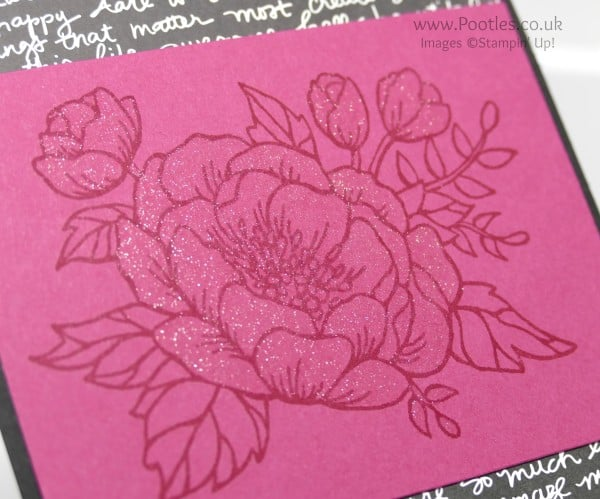 Stampin' Up! Demonstrator Pootles - Sparkly Birthday Blooms Close Up on Wink of Stella