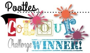 Pootles' Colour Challenge Winner