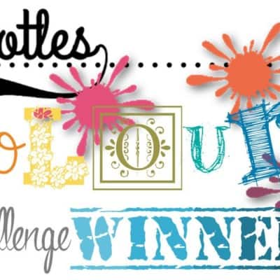 Pootles' Colour Challenge Winner 007