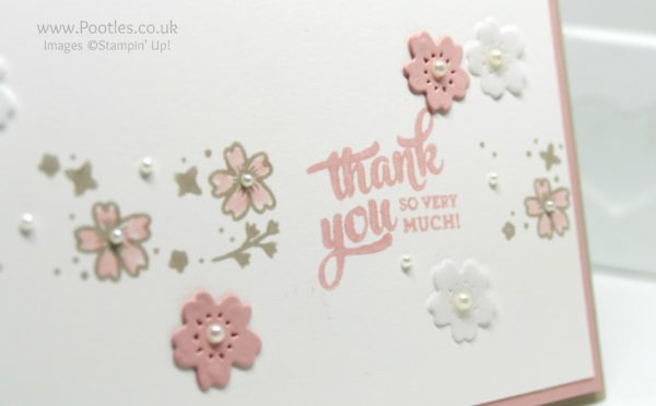 Stampin' Up! Demonstrator Pootles - Mixed Borders and Bloomin Hearts Close Up