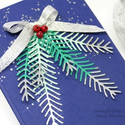 Pretty Pines Silver Tipped Fir